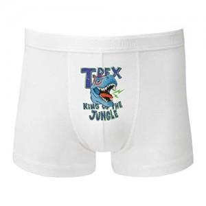 Boxershort - Tyrannosaurus Dino Cartoon Brille - Unterhose für Herren und Männer