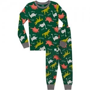 Harry Bear Jungen Dinosaurier Schlafanzug Slim Fit